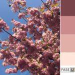 kleurinspiratie, kleurpallet, lente, springtones, bloesem