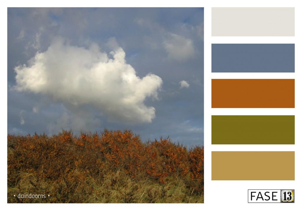 fase13 kleurinspiratie voor je interieur, duindoorns