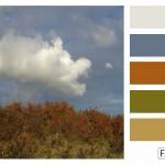 FASE13 | Kleurinspiratie voor je interieur! ~ Duindoorns