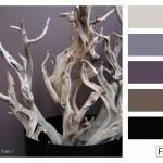FASE13 | Kleurinspiratie voor je interieur! ~ ghostwood hues
