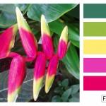 FASE13 Kleurinspiratie voor je interieur! ~ Summer Neon hues